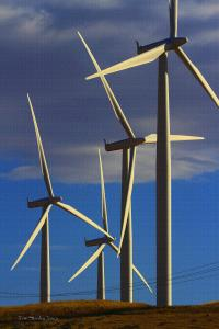 Wind Turbines Make More Than Electricity